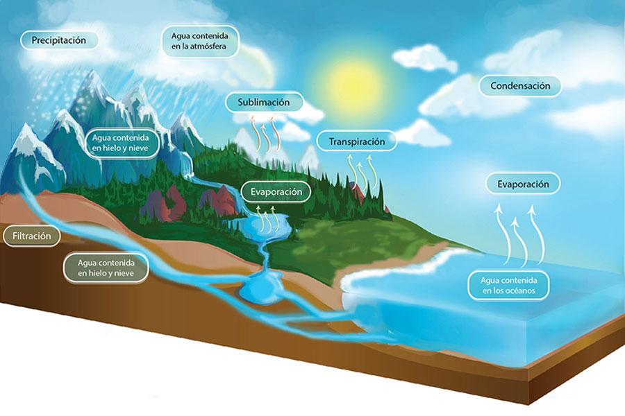 Ciclo Del Agua Portal Académico Del Cch